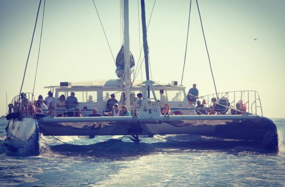 Location catamaran incentive Nice